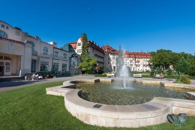 - Danubius Health Spa Resort Thermia Palace - hotel Пиештяны